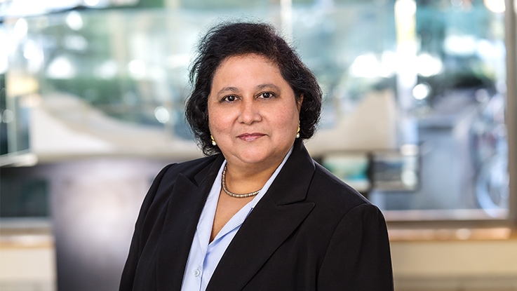 Professor Aarti Gupta