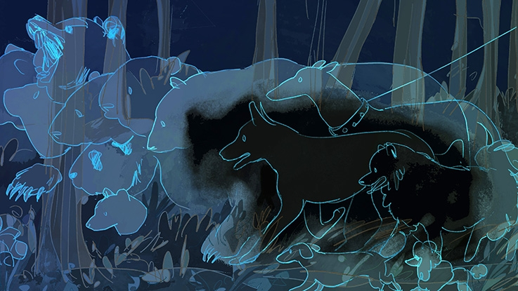 Illustration in shades of blue.  Outlines of different four legged mammals in a forest ranging from dog to bear.
