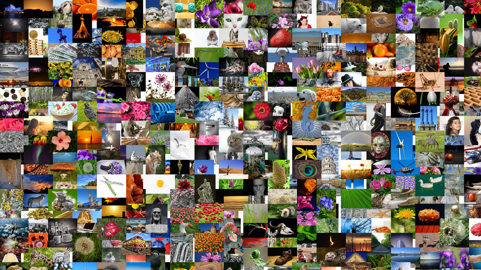 Collage of hundreds of small photos